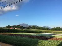 今週末の天気と気温(2019年8月9日) - 北軽井沢スウィートグラス