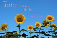 夏の日 花めぐりひまわり・蓮の花・ホテイアオイ・サルスベリ - 日本全国くるま旅