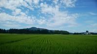 夏期休業のお知らせ - 小宮山建築通信