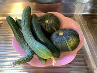夏野菜 - ごまめのつぶやき