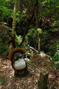 滝巡り@滋賀鶏鳴の滝・其の二 - デジタルな鍛冶屋の写真歩記