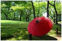 和の庭園 -  one's  heart