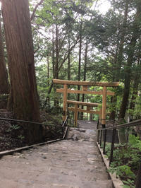 旦那さんと三峯神社へ③えんむすびの木から遥拝殿 - ねこちんの日常