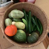 固定種の野菜と伝統製法の調味料の最強コンビを学ぶ - Coucou a table!      クク アターブル!