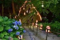 千躰地蔵盆金剛輪寺 - 峰さんの山あるき