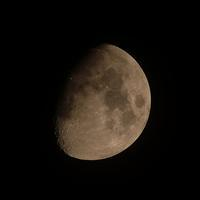 月の色 - ブナの写真日記