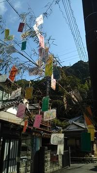 井宮七夕まつりの子ども神輿について - ウンノ整体と静岡の夜