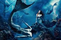 アニー・リーボヴィッツ:The Little Mermaid - Books