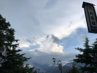 旦那さんと三峯神社へ④お猿に遭遇〜大滝温泉 - ねこちんの日常