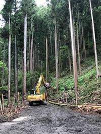 お盆中の営業日のご案内 - ㈱栃毛木材工業