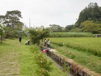 夏スぺ♪さとの夏遊び-3日目- & 夏の星空観察 - 千葉県いすみ環境と文化のさとセンター