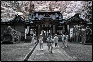 参拝(箱根神社) - コバチャンのBLOG