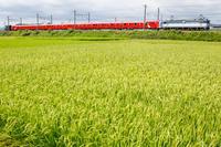 甲種輸送東京メトロ 丸ノ内線 2000系 - はじまりのとき