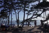 一色海岸1 - トコトコブログ