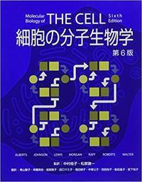 知識と情報へのバリアフリー化 - 大隅典子の仙台通信