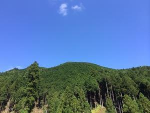 8月31日(土)第21回吉野の森見学バスツアー開催のお知らせ - 国産材・県産材でつくる木の住まいの設計 FRONTdesign  設計blog