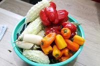 麻婆豆腐(中国山椒と日本山椒のW使い) - 登志子のキッチン