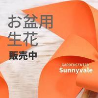 お盆の生花 - さにべるスタッフblog     -Sunny Day's Garden-