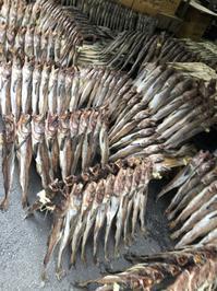 干し鱈と丸鶏 - 今日も食べようキムチっ子クラブ (料理研究家 結城奈佳の韓国料理教室)
