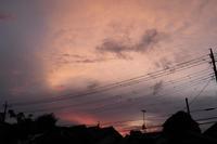 台風 - 空を見上げて