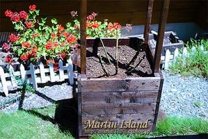 [DIY] バラ用木製コンテナの再製作。 - Martin Island ~空と森と水と~