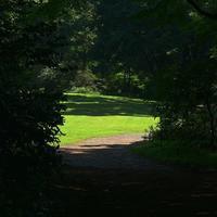 赤城自然園アラカルト(1) - 『私のデジタル写真眼』