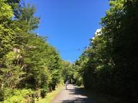 夏休み@別荘の日々 - 小粋な道草ブログ