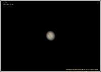 木星が綺麗に見える - 野鳥の素顔 <野鳥と日々の出来事>