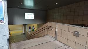 東京セミナー2019.8.11,12+「白金の龍穴に行ってきた」の話 - らくちん道への道