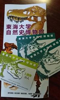 東海大学自然史博物館へ行ってきました - ウンノ整体と静岡の夜