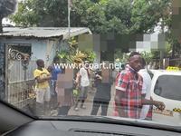 ジャマイカ関連番組放送のお知らせNHK地球タクシー - ジャマイカブログ Ricoのスケッチ・ダイアリ