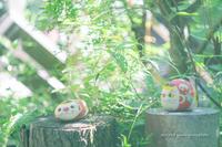 涼しい音色。 - Yuruyuru Photograph