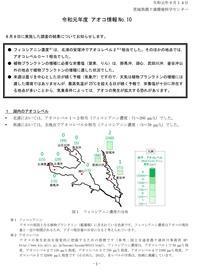 【アオコ情報(No.10)】 - ぴゅあちゃんの部屋