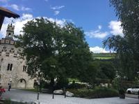 2019夏のイタリア旅行記11カンティーナ・アバッツィア・ディ・ノヴァチェッラ - ユキキーナの日記