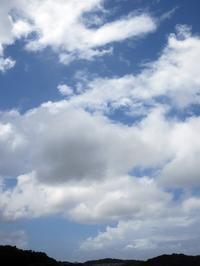 【台風の前に墓参と鎌倉駅前パーラー扉】 - お散歩アルバム・・毎日がキャベツ曜日