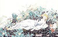 松本かつぢ画の「真夏の夜の夢」 - Books