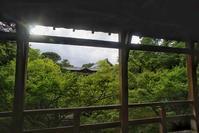 ★朝の東福寺 - 一写入魂