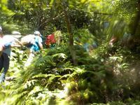 山!川!海!ぼうけんキャンプ! - 子どものための自然体験学校「アドベンチャーキッズスクール」