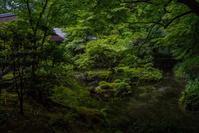 南禅院 - 鏡花水月