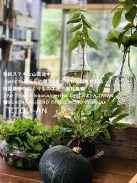 暮らしの雑貨 - 房総 暮らしの雑貨屋+おくりもの絵本+SWEET