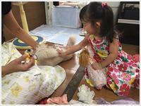 娘一家の大分最後の1日は台風の影響も少しあったけど、のんびりできてかえって良かったね~ - さくらおばちゃんの趣味悠遊
