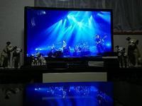 雨戸を閉めてDVD観賞 - NATURALLY