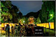 SONY SEL24F14GMで撮ったぼんぼり祭り鶴岡八幡宮① - エーデルワイスPhoto