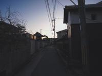 豊中、早朝の法雲寺の山門前の通りです。 - 徒然なるままに