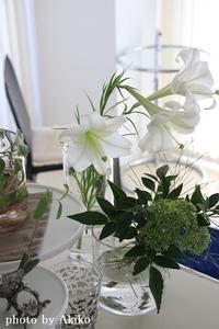 アトリエの今朝のお花たち♪ - Blanc de Blancs