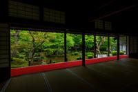 新緑輝く圓光寺 - 花景色-K.W.C. PhotoBlog