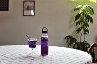 暮らしの一コマ。IKEAの新商品の持ち手付き水筒が便利♪ - 暮らしの美学