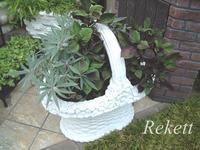 猛暑にも負けない元気な植物! - インテリア&ガーデンSHOP rekett