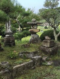 涼を感じる風景〜うぐちゃんとミニミニ盆栽苔鉢と〜 - CROSSE 便り