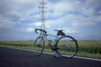 朝ポタ - 青い自転車とともに
